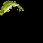 dirty goose fish icon