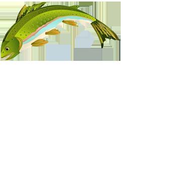 dirty goose sport fishing fish