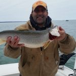 trout catch on lake ontario ny