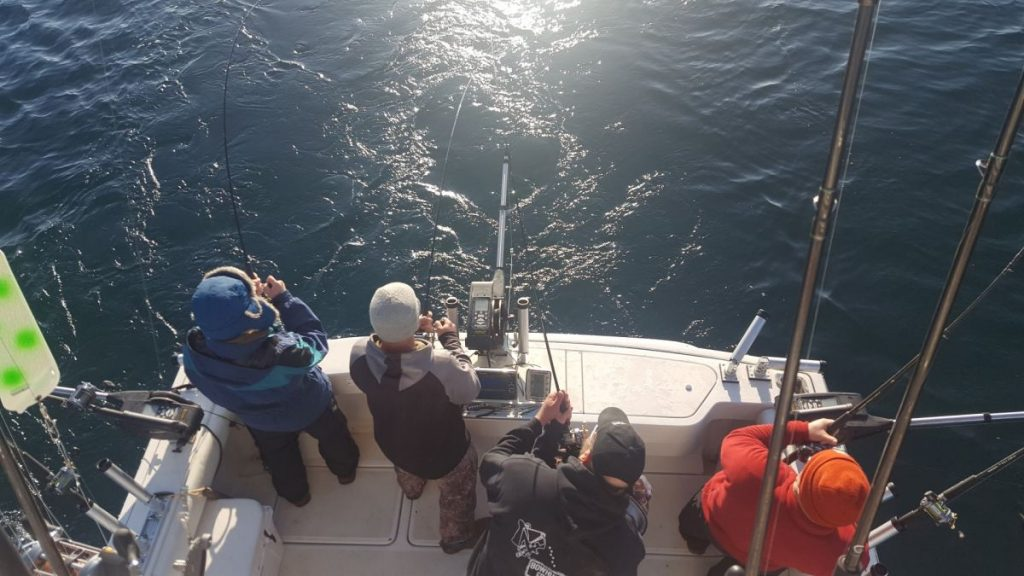 view from back of lake ontario fishing charter
